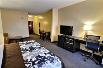 King Suite can accommodate up to four persons